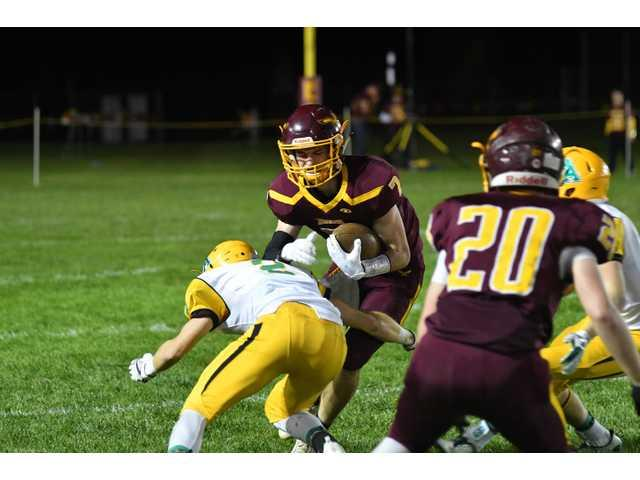 Eagles hold off Vikings in Level I playoff win