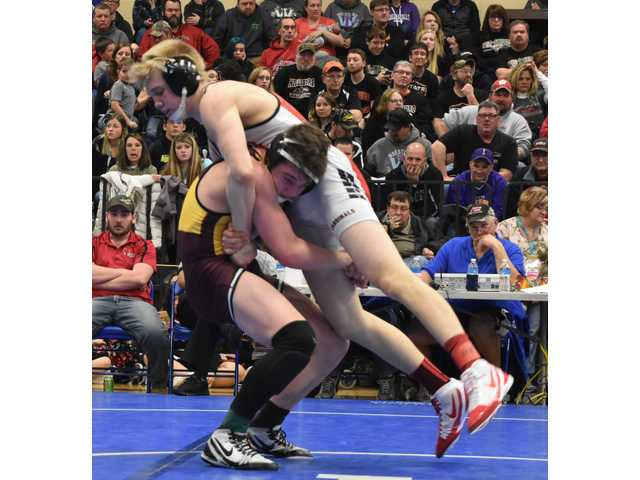 Eight qualify for individual state wrestling tournament