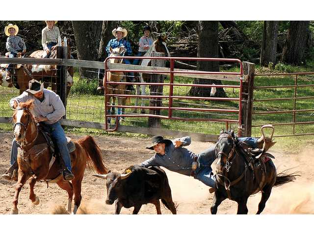 Don't miss the Ridge & Valley Rodeo in Gays Mills