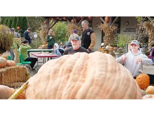 Local men focus on growing big pumpkins