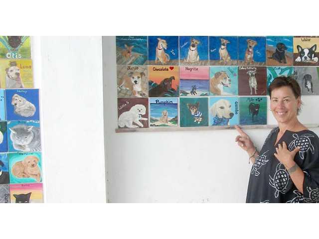Los perros de la Isla Mujeres