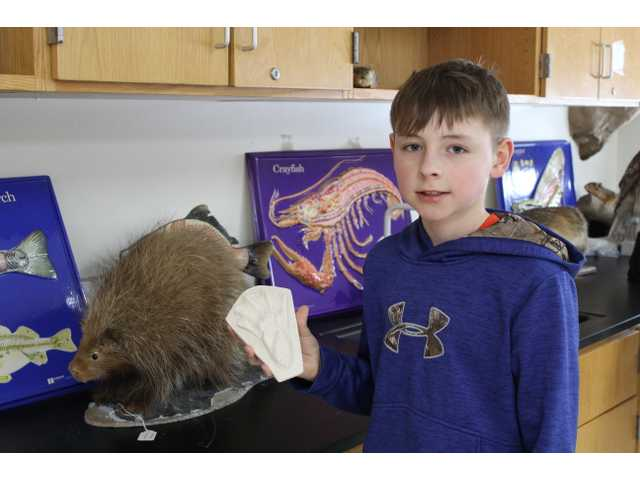 Youths, adults enjoy 4-H Discovery Day