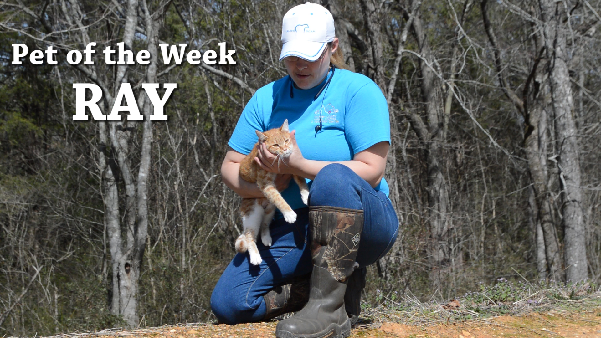 VIDEO - Ray is Pet of the week