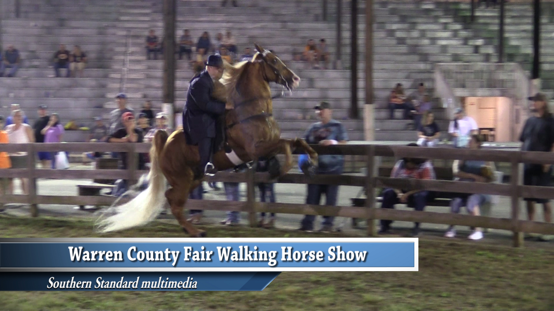 VIDEO - Warren County Fair Horse Show highlights